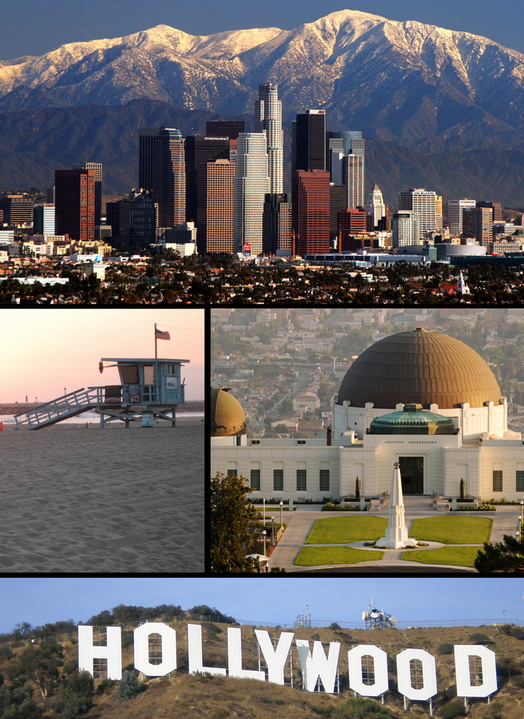 LAX Pic_Montage_5