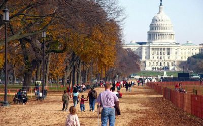 xfs_700x500_c80_DC National Mall in Fall-0